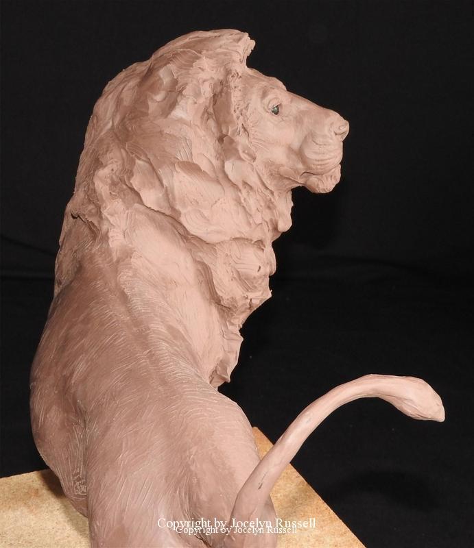 July 17 - Audubon Zoo African Lion Sculpture - Running Wild Studio African Lion Bronze Male Lion Sculpture